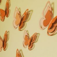 3D Papilion Butterflies wall stickers - Kids Cove
