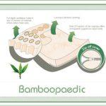 Bamboopaedic cot mattress