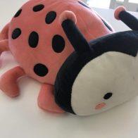 Pink Lady bug novelty cushion - Kids Cove